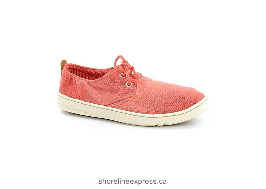 Buy pretty Men Shoe Timberland Sneakers & Trainers Red